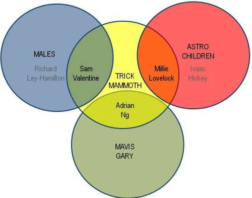 Venn Diagram of some related Dunedin Pop Underground bands & members